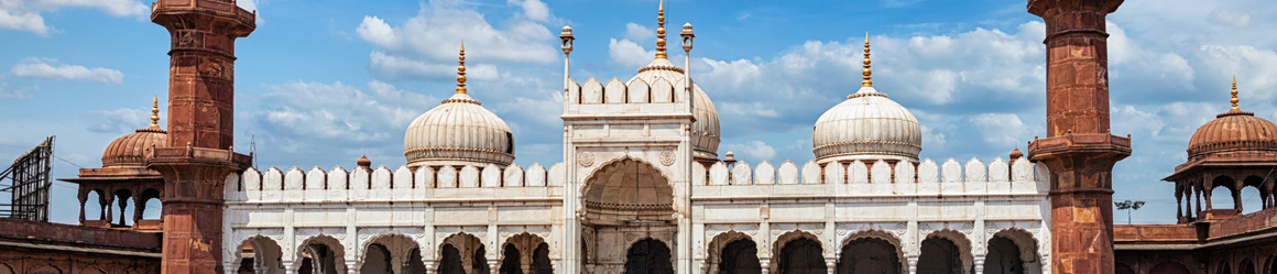 The Bhopal Muslim Old City is full of astonishing mosques
